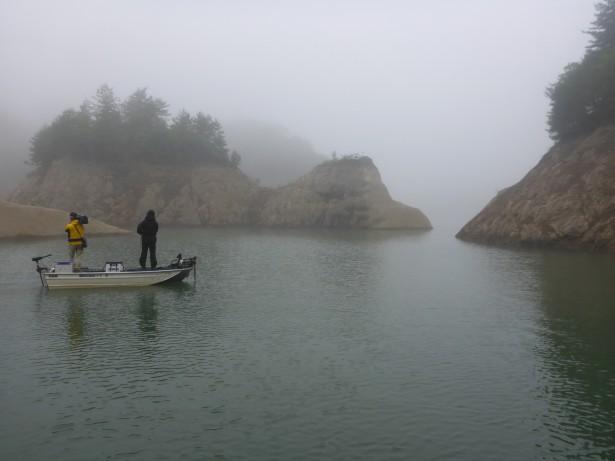 日吉朝は霧